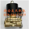 2W系列水(热水)气电磁阀  2W-160-15